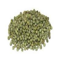Green Peppercorn Manufacturers