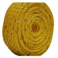 Danline绳索 制造商