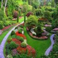 Designer Landscape Services Manufacturers