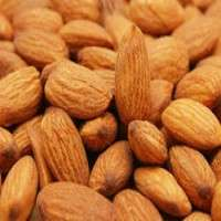 Almond Seed Manufacturers