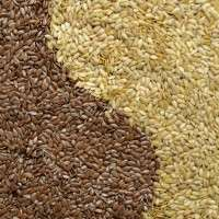 Agriculture Seeds Manufacturers