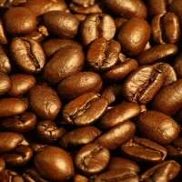 Arabica Coffee Beans Manufacturers