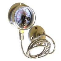 Diaphragm Sealed Gauges Importers