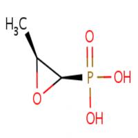 Fosfomycin Manufacturers