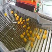 Fruit Sorting Machine Manufacturers