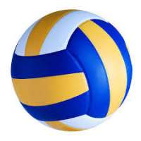Rubber Volleyball Manufacturers