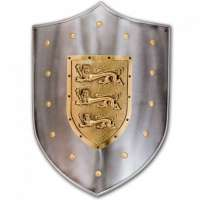 Metal Shields Manufacturers
