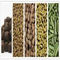 Horse Feeds Manufacturers