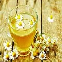 Chamomile Tea Manufacturers