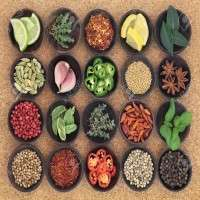 Food Seasoning Manufacturers