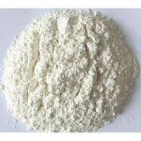 Dehydrated Garlic Powder Manufacturers