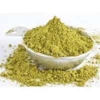 Gymnema Sylvestre Extract Powder Manufacturers