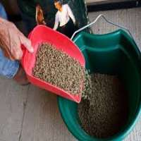 Feed Supplement Manufacturers