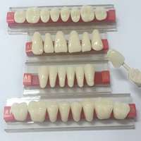 Acrylic Teeth Manufacturers