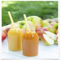 Fruit Nectars Manufacturers