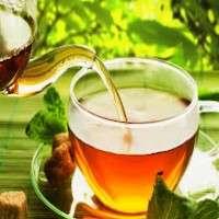 Organic Tea Manufacturers