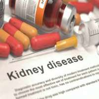 Kidney Drugs Manufacturers