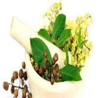 Siddha Medicines Manufacturers