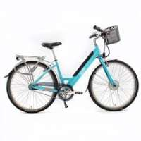 Electric Bike Manufacturers