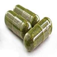 Organic Moringa Capsules Manufacturers