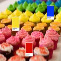 Edible Colors Manufacturers