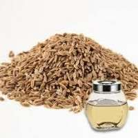 Anethi Oil Manufacturers