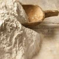 强化面粉 制造商