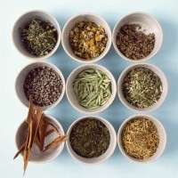 Medicinal Herbal Tea Blends Manufacturers