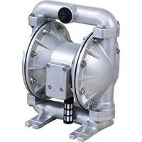 Double Diaphragm Pump 制造商