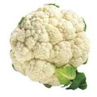 Organic Cauliflower Manufacturers