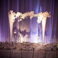婚礼装饰 制造商