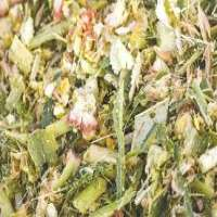 Corn Silage Manufacturers
