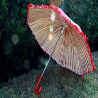 Mushroom Umbrella Manufacturers