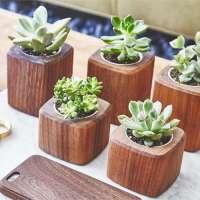 Wooden Flower Pot Manufacturers