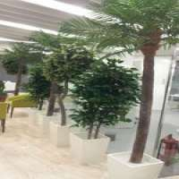 Artificial Plants Manufacturers
