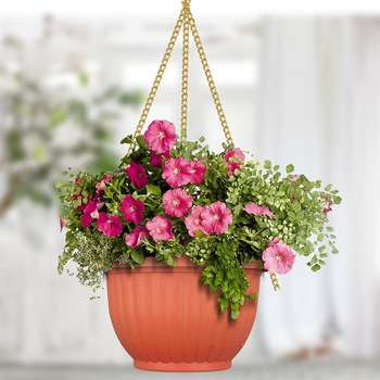 Handing Flower Basket Manufacturers