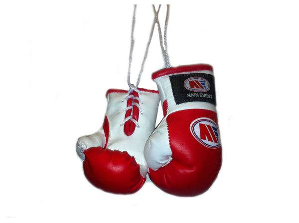 Hanging Boxing Glove Manufacturers