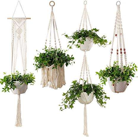 Hanging House Plant Manufacturers