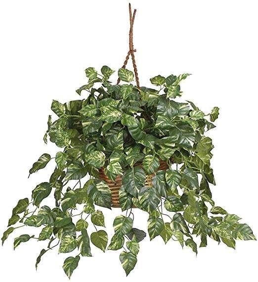 Hanging Silk Plant Manufacturers