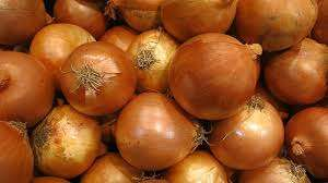 Harvest Yellow Onion Manufacturers