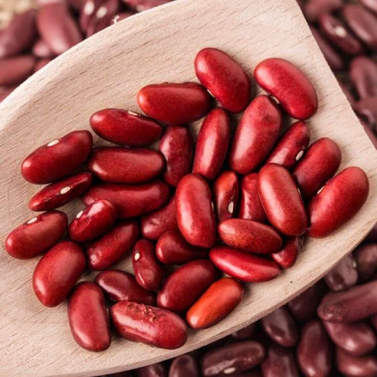 Harvesting Kidney Bean Manufacturers