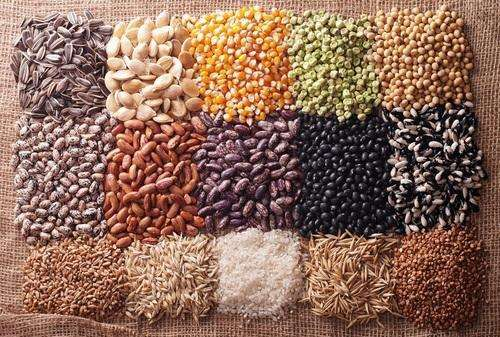 Harvesting Vegetable Seed Manufacturers
