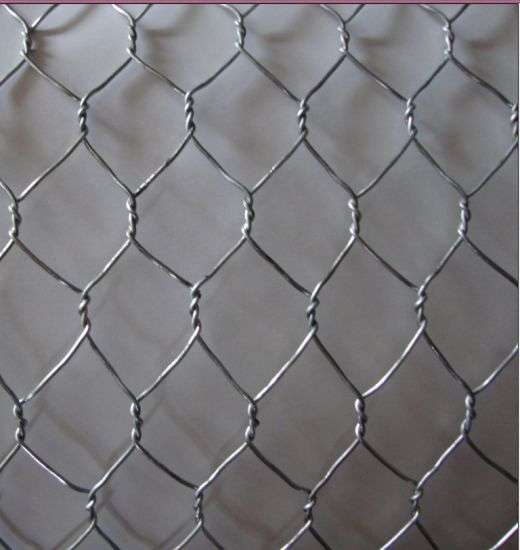 Hexagonal Galvanized Iron Wire Manufacturers