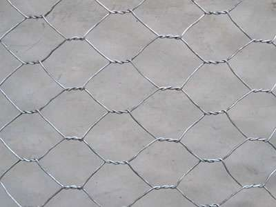 Hexagonal Mesh Cage Manufacturers