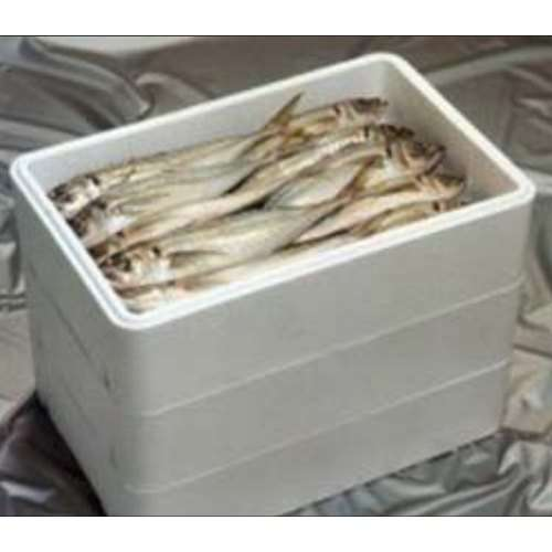 Seafood Box Packing Manufacturers
