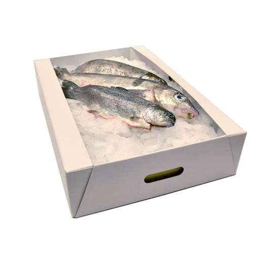 Seafood Packing Box Manufacturers