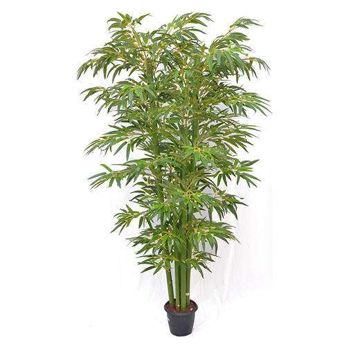 Silk Bamboo Plant Manufacturers