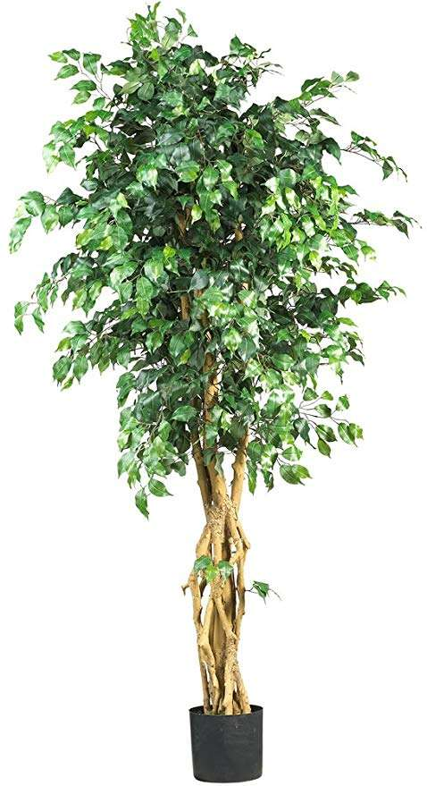 Silk Ficus Tree Manufacturers