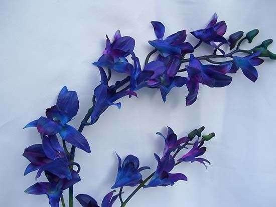 Silk Flower Mo Manufacturers