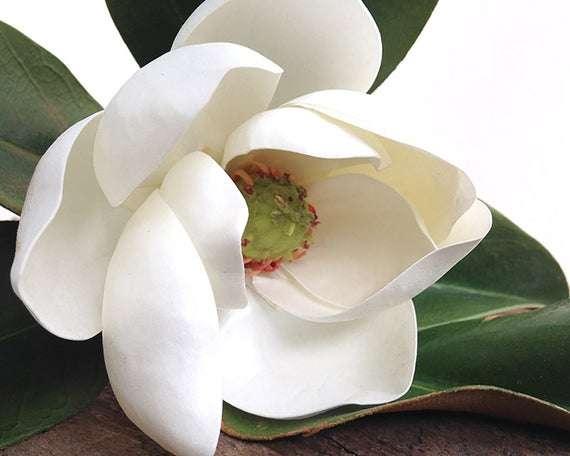 丝绸玉兰花 制造商